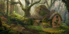 Forest Dwelling Daniel Romanovsky