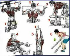 Back Exercise... #workout #fitness #exercise #wod
