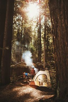 Camping in the forest.