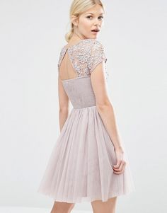 426b815cbb Little Mistress Petite Short Sleeve Lace Bodice Mini Dress With Tulle Skirt