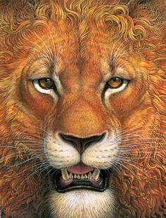 Richard Jesse Watson, One wintry night (book) Lion Photography, Lion Art, Fauna, Chalk Art, Wildlife Art, Illustrators, Art Gallery, Illustration Art, Drawings