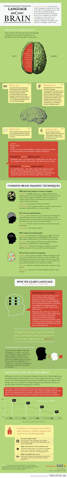 Language And Your Brain…I think this would be great for kids