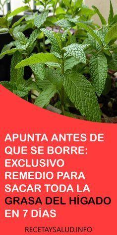 APUNTA ANTES DE QUE SE BORRE: EXCLUSIVO #REMEDIO PARA #SACAR TODA LA #GRASA DEL #HÍGADO EN 7 DÍAS #PlantasMedicinales