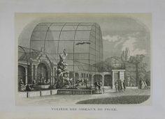 Antwerpen ZOO, een oude gravure, omstreeks 1861 met de grote volière van de roofvogels. Ze werd gebouwd in 1856, naar ontwerp van K. Servais.