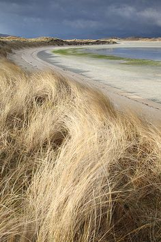 BLonD called BEACHgrass?  SALThay?  SHORE...  Traigh Losgaintir from Corran Sheileboist