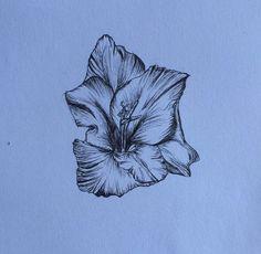 Gladiolus flower drawn in fine liner pen!