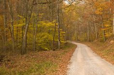 pictures of dirt country roads | Country Dirt Road | Flickr - Photo Sharing!