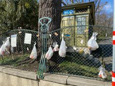 People in vienna upper class neighborhood donate goodies at a Parks fence Museum, Vienna, Fence, Parks, The Neighbourhood, Goodies, News, People, Corona
