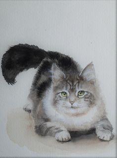 Watercolor Cat, Watercolor Animals, Watercolor Paintings, Drawing Animals, Animal Drawings, Cat Paintings, Cat Sketch, Sketch Books, Bird Art
