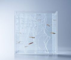 The Waterscape Aquarium Exhibit held at the Misawa Design Institute features a series of small architectural and artsy fish tanks designed by Hakura Misawa Aquarium Design, Modern Fish Tank, Conception Aquarium, Design Japonais, Fish Tank Design, Pet Fish, 3d Prints, Aquarium Fish, Fish Aquariums