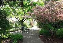 Atlanta Botanic Garden - Bing Images