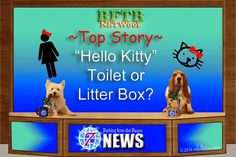 BFTB Channel 7 NETWoof News by mkclinton.com #dogs #news #doghumor