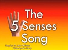 Our December Theme song: The 5 Senses Song song by Dr Jean Feldman video by Mr Harry Kindergarten Songs, Preschool Music, Preschool Science, Teaching Music, Teaching Science, Science Activities, Preschool Classroom, Preschool Ideas, Five Senses Preschool