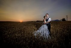 Matt Shumate Photography at Red Barn Farms wedding bride and groom sunset portrait standing in wheat field