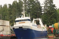 Port Hardy, BC, Canada: active commercial fishing along with sports fishermen; our first rain in over a week, but that is the nature of Port Hardy