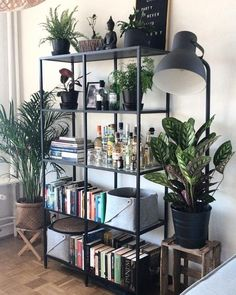Sylvester Stallone's Life Story – Pflanzen ideen Plants Pictures & Ideas room Living Room Decor, Living Spaces, Bedroom Decor, Ikea Vittsjo, Room With Plants, House Rooms, House Design, Interior Design, Home Decor