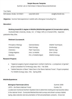 Mistakes 3 Resume Format Pinterest Sample Resume Resume