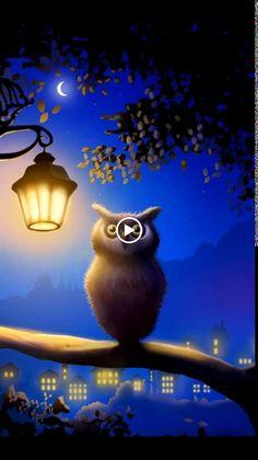 Vídeob      buenas noches