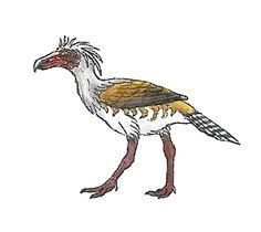 Psilopterus | ... внешнего вида Psilopterus bachmanni