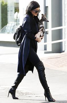 Kylie Jenner carried her pooch as she shopped in West Hollywood in knee-high boots Feb. 23.