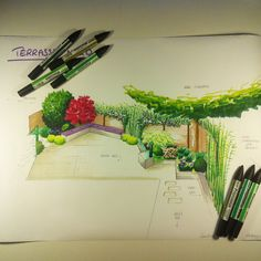 Avant projet d'aménagement paysager Terrasse ombragée - Chalonnes sur Loire - 49