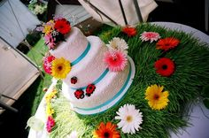 Anther throw back cake... if you're ever looking for wheat grass try Booster Juice!  Took me forever to locate.  But they will sell it to you by the sheet.  Just give them a heads up as they don't always have lots of it. www.toonicetoslice.ca