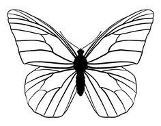 Resultado de imagen para dibujos para colorear mariposas