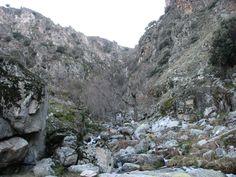 El paraje de los Riscos de Cabezamerina, una preciosa cascada, de gran altura, y una importante buitrera.