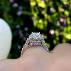 This white gold diamond halo engagement ring features a halo top, set with diamonds framing the princess cut diamond center. The shank is adorned with diamonds cascading down the narrow shank on the sides of the sightly squared shank. Princess Cut Halo, Princess Cut Engagement Rings, Halo Diamond Engagement Ring, Princess Cut Diamonds, Diamond Bracelets, Diamond Rings, Diamond Jewelry, Diamond Cuts, White Gold Diamonds