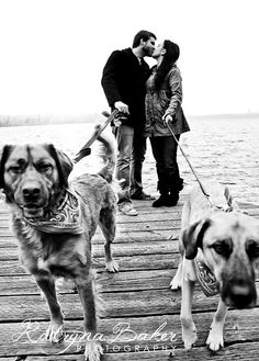 Engagement with dogs....love this one on the docks