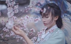 Li Ziqi's Online Store - Share Oriental Lifestyle and Foodie Chinese Festival, Chinese Culture, Hanfu, Traditional Outfits, Traditional Chinese, Asian Girl, Beautiful, China, Festivals