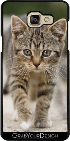 Coque Pour Samsung Galaxy A5 2016 (SM-A510) - Chat  518 - WonderfulDreamPicture