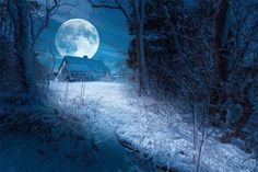 Full Cold Moon Blessings! :) Find out how you can get a copy of the spell that I wrote for tonight's Full Cold Moon!