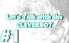 Let´s Talk with the Cleverbot #1 [GER] [FULL HD]