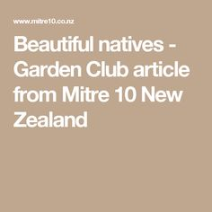Beautiful natives - Garden Club article from Mitre 10 New Zealand
