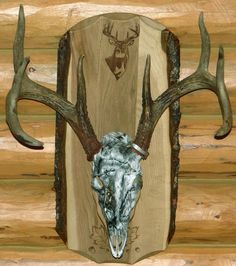 Our European Skull Plaque with a customer's skull = a great wall mount!  www.springbrooklaser.com