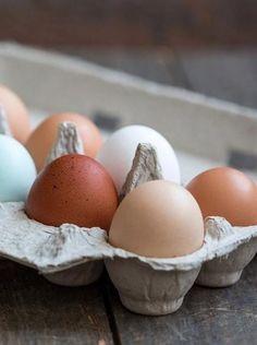 Good Eggs online farmers market