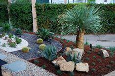 Corbin - mediterranean - landscape - los angeles - by BlueGreen Landscape Design - cacti, yucca, agave