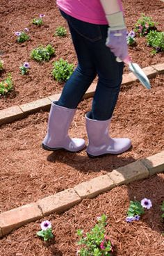 Lay cardboard down to help create a new garden pathway