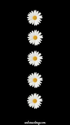 Retro Wallpaper Iphone, Daisy Wallpaper, Vintage Flowers Wallpaper, Flower Iphone Wallpaper, Pop Art Wallpaper, Flower Background Wallpaper, Graphic Wallpaper, Black Phone Wallpaper, Cute Wallpaper Backgrounds