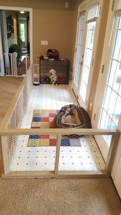 Custom Rescue Dog Pen More