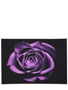 Graham & Brown Purple Drama Rose Wall Art- at Debenhams Mobile Beautiful Roses, Beautiful Gardens, Graham Brown, Wall Art Pictures, Wall Art Designs, My Favorite Color, Beautiful Landscapes, Canvas Wall Art, Dibujo