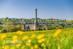 Bliss Mill in Chipping Norton in the Buttercups back in April 2018