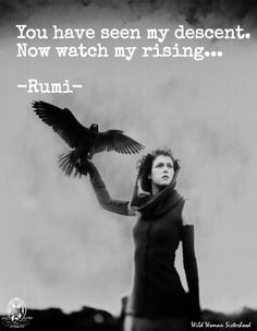 You have seen my descent. Now watch my rising... -Rumi WILD WOMAN SISTERHOOD™