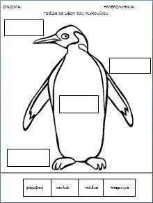 Ένας πιγκουίνος...όχι και τόσο τέλειος!!!!!!!!! » Kinderella