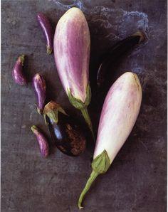 eggplant variaties