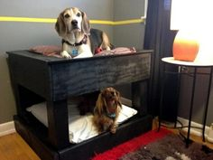 Make great dog beds from Euro pallets themselves – dog beds made ...
