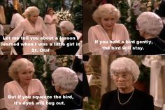 "{The Golden Girls} ~ Rose - ""Let me tell you about a lesson I learned when I was a little girl in St. Olaf. If you hold a bird gently, the bird will stay. But if you squeeze the bird, it's eyes will bug out."""