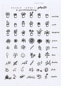 Drawing Doodles Ideas Doodle ideas 1 - plants Remember when I asked you what should I do with the remaining pages of my bujo? Well, the most suggested thing was to do some doodle ideas, which I did, yaay :D. Doodle Bullet Journal, My Journal, Bullet Journal Inspiration, Journal Pages, Bullet Journal Ideas Handwriting, Journals, Bullet Journal Notebook, Doodle Inspiration, Tattoo Inspiration