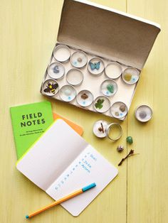 Spring craft idea: a specimen collector's box. A natural sense of curiosity and wonder makes every child a biologist. Let yours explore!